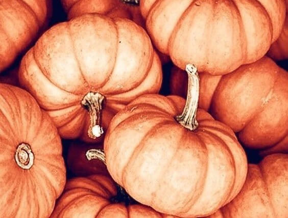 Cold Busting Pumpkin Soup Recipe